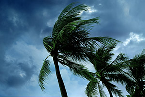 3 Hurricane Safety Tips for Homeowners